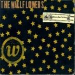 6 WallflowersBringingDowntheHorse