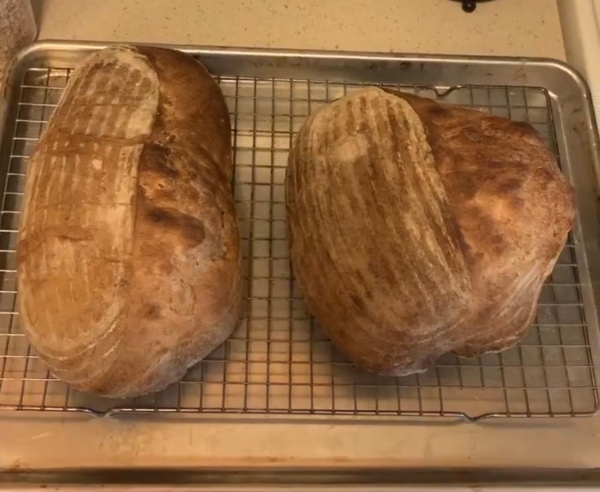 Two fully baked loaves on a wire cooling rack.