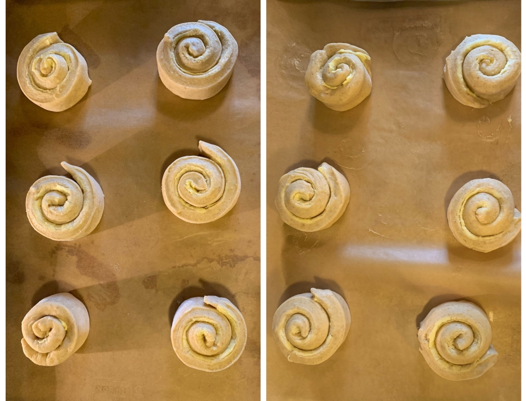 twelve spirals of mallorca dough, newly shaped, on parchment paper