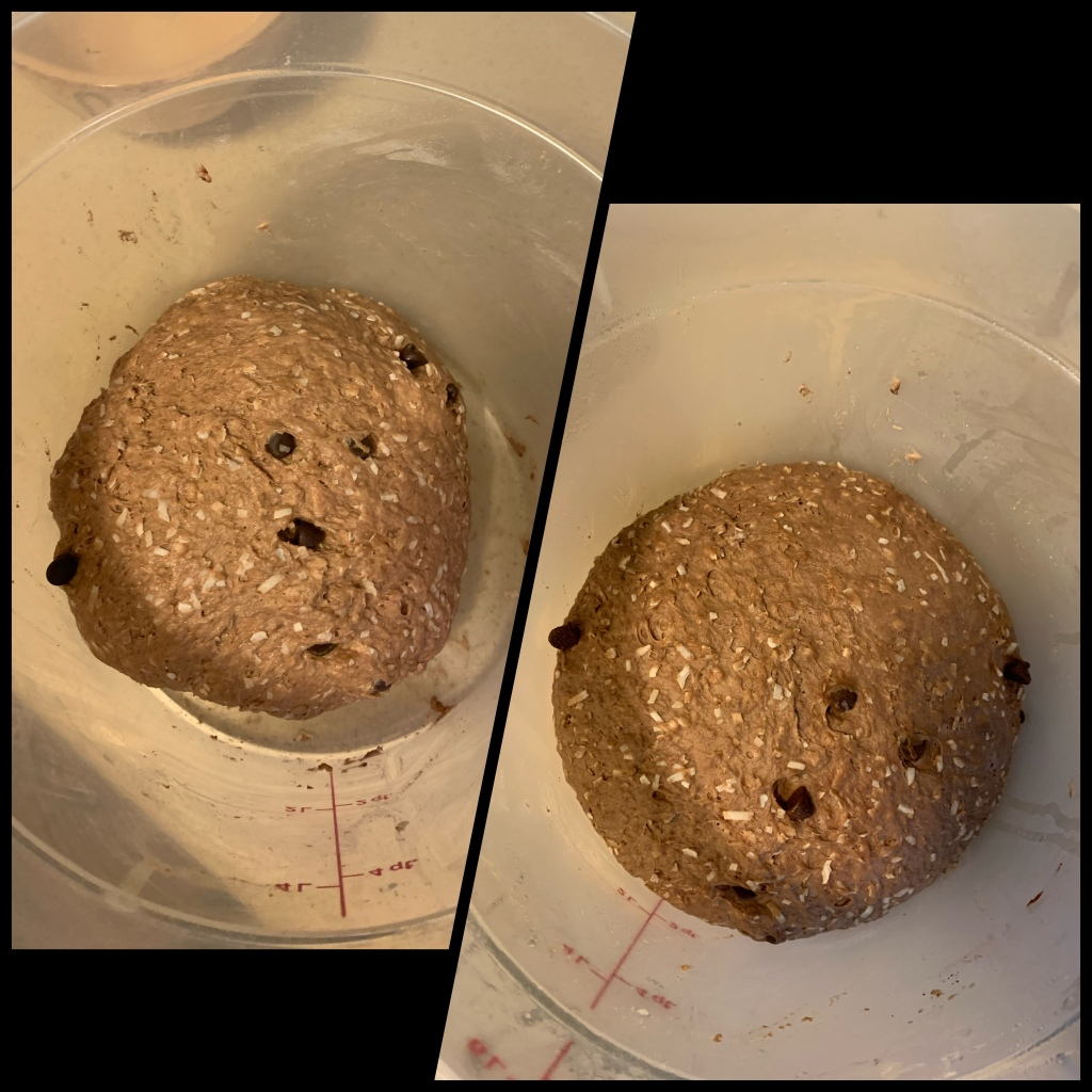 Left is kneaded dough in clear container. Half the dough is not touching the sides. Right image is same dough after rising, with the dough touching all the sides