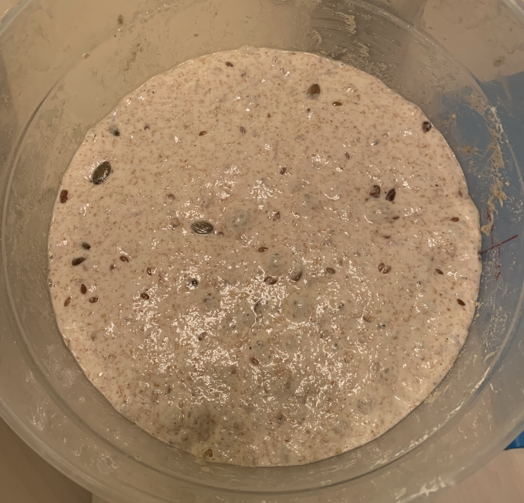 Seedy dough in a clear plastic container.