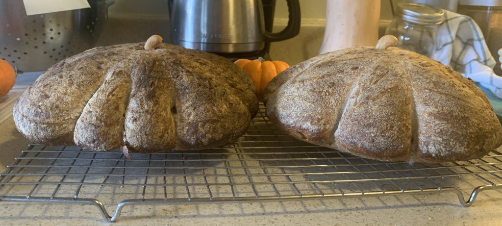 Two loaves on a cooling rack, viewed from the side.