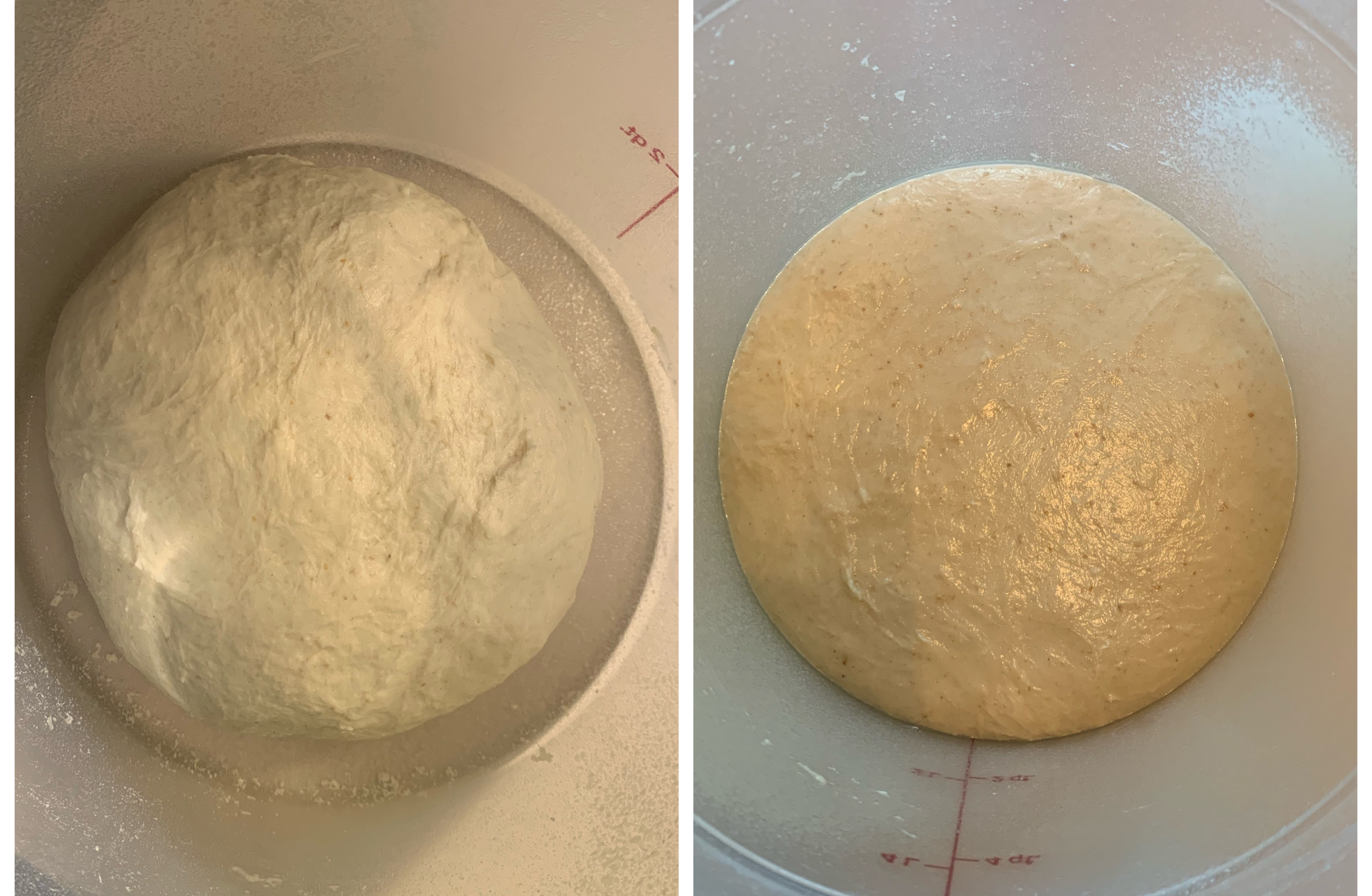 Left: recently kneaded dough in cambro. It doesn't touch the sides. Right: same dough, but it has expanded to touch the sides and is shiny and smooth.