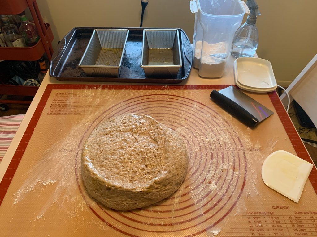table with dusted rubber mat. On the mat is a round of oily, risen dough. Next to the dough are a metal and a plastic bench scraper. Also on the table: baking sheet with two oiled tins, open container of bench flour, and a spray bottle.