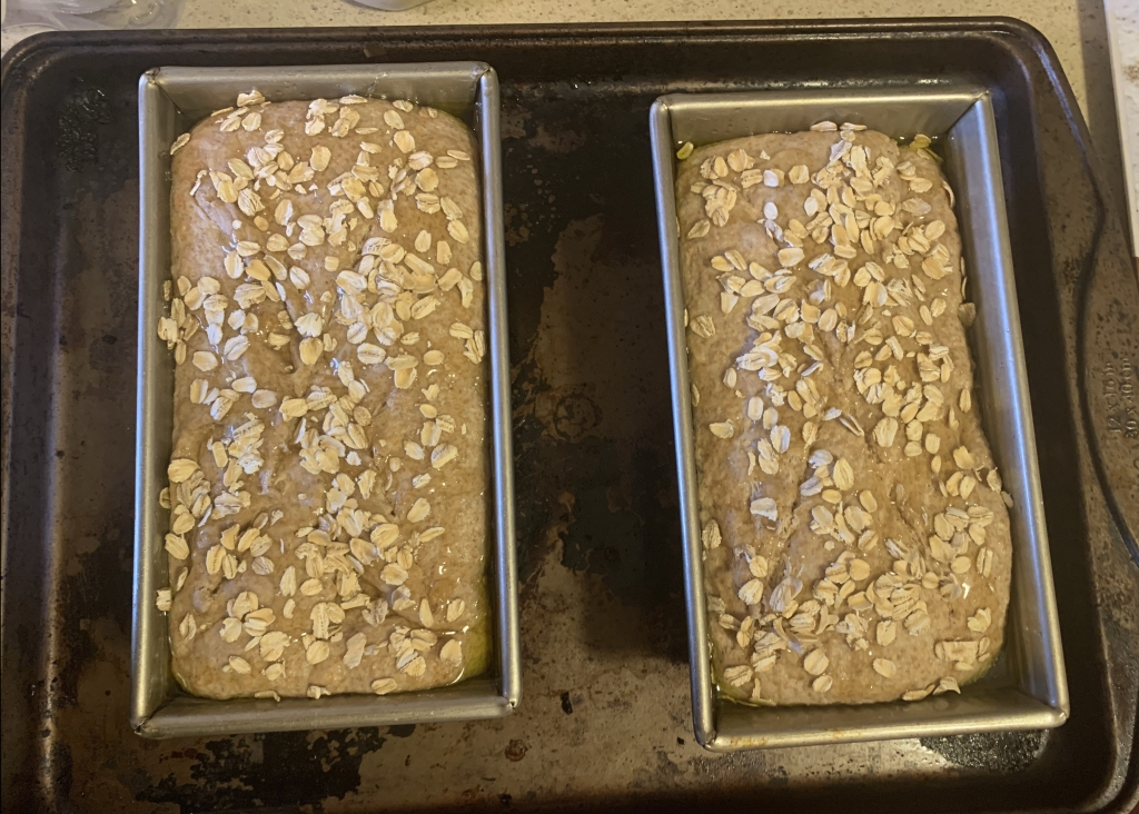 Two tins of dough covered in honey and oatmeal.