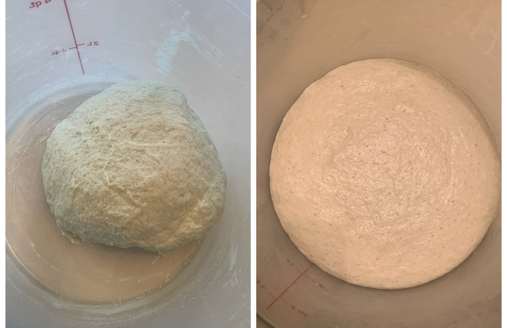 Left: freshly kneaded dough in a cambro container. Right: same dough, but bigger after fermentation.